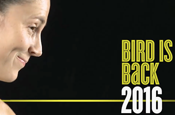 bird-is-back